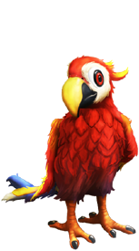 Parrot of My Free Zoo