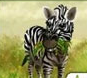 Increase your zoo with a lot of different animals